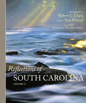 ClarkPoland13_book_cover_Reflections.jpg